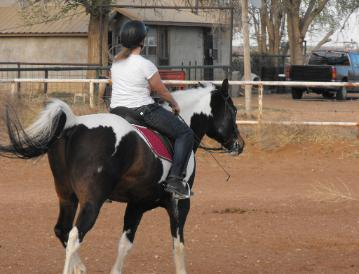 She came so she would have a reason to ride and maybe learn some new things to do with her horse.